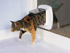 Catmate Electromagnetic Cat Door Australiapetdoors Com Au