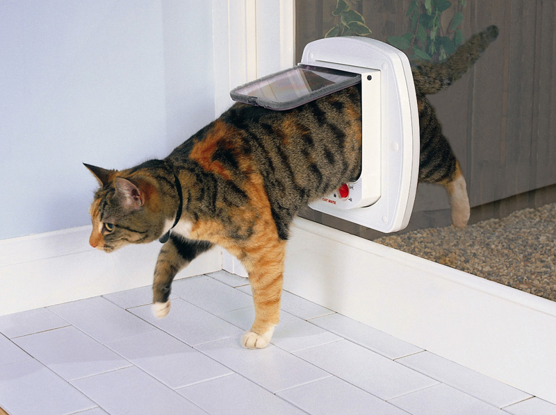 Catmate Electromagnetic Cat Door Australiapetdoors Com Au
