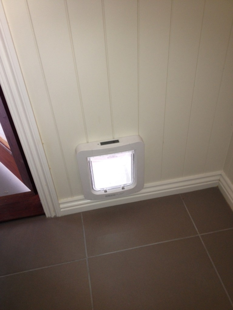 Sureflap Small Dog Door Australiapetdoors Com Au