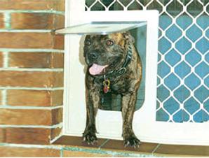 Petway Access Door Large Size Bronze