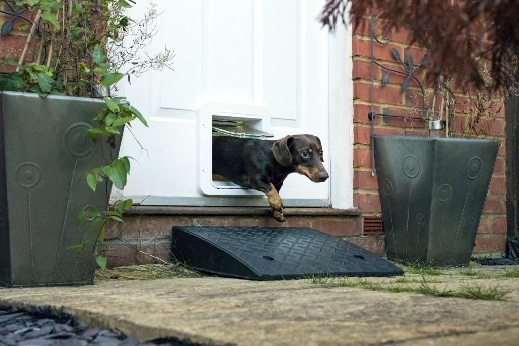 Sureflap Internet Ready Microchip Small Dog Door Optional
